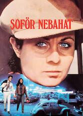 Search netflix Şöför Nebahat
